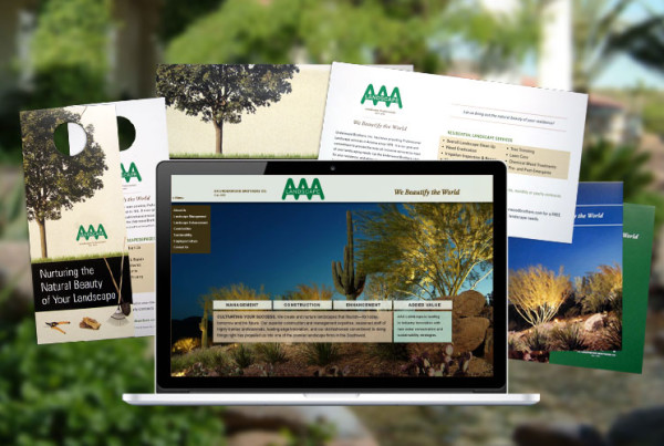 Project-AAA-Landscape-Cover