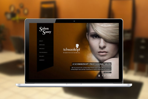 Project-Salon-Sassy-Cover